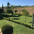 ménager son jardin : 3 étapes pour y arriver